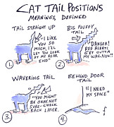 Molly Brandenburg - Cat Tail Positions