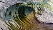 Catch Posters - Catch a Wave Poster by Cheryl Young