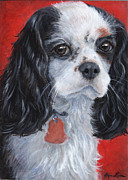 Cavaliers Painting Prints - Cavalier King Charles Spaniel Print by Hope Lane