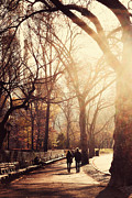 Emmanouil Framed Prints - Central Park Afternoon Framed Print by Emmanouil Klimis
