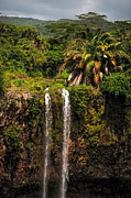 Lush Vegetation Prints - Chamarel Waterfall. Mauritius Print by Jenny Rainbow