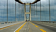 Table Bay Framed Prints - Chesapeake Bay Bridge At Annapolis Framed Print by Skip Willits