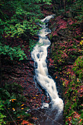 Gorge Photos - Chesterfield Gorge New Hampshire by Edward Fielding