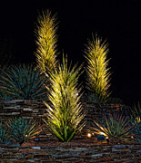 Installation Art Photos - Chihuly at Night by Elaine Snyder