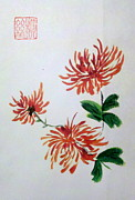 Margaret Welsh Willowsilk - Chrysanthemums