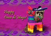 Wildlife Celebration Digital Art - Cinco de Mayo Raccoon by Jeanette K