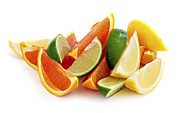 Sliced Metal Prints - Citrus wedges Metal Print by Elena Elisseeva
