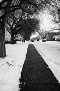 Footpaths Art - cleared footpath on residential street pleasant hill Saskatoon Saskatchewan Canada by Joe Fox