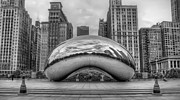 Noah Katz - Cloud Gate in the Park
