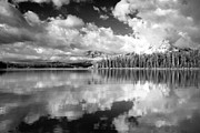 Amanda Kiplinger - Cloud Reflections