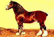 Plow Mixed Media Posters - Clydesdale Stallion Poster by Charles Ross
