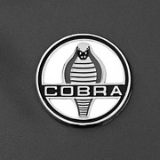 Cobra Framed Prints - Cobra Emblem Framed Print by Jill Reger