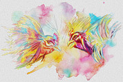 Cock Paintings - Cock fighting by Catf