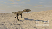 Animal Themes Digital Art Prints - Coelophysis Running Across A Barren Print by Kostyantyn Ivanyshen