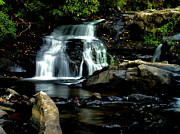 Matthew Winn Posters - Coker Creek Falls Poster by Matthew Winn