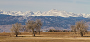 Decorative Art - Colorado Front Range Continental Divide Panorama by James Bo Insogna