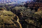 R Arizona Prints - Colorado River and Grand Canyon Print by Thomas R Fletcher