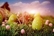 Mythja Photos - Colorful Easter  by Mythja  Photography