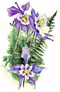 Decor Paintings - Columbine Flowers Art by Blenda Studio