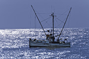 Trolling Prints - Commercial Fishing Boat Dickey Byrd Out Of Half Moon Bay Print by Scott Lenhart