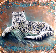 Verdigris Framed Prints - Copper Snow Leopard Framed Print by Sandi Baker