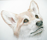 Mary Mayes - Corgi
