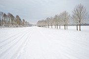 Countryroad Framed Prints - Countryroad covered in snow Framed Print by Jan Marijs