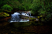 Matthew Winn Posters - Cove Creek Falls Poster by Matthew Winn