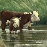 John  Reynolds - Cows in the Pond