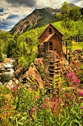 Mill On A Cliff Framed Prints - Crystal Mill Wildflowers Framed Print by Adam Jewell