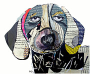 Canine Mixed Media Prints - Dachshund  Print by Brian Buckley
