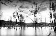 Grey Clouds Photos - Dark Reflections by Damian Morphou