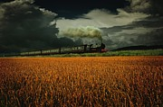 Cornfield Photo Metal Prints - Dead Mans Hill Metal Print by Art Grafts