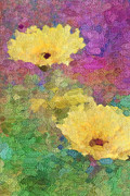 Yello Prints - Delight Print by Betty LaRue
