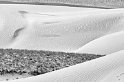 All - Desert abstract by Hitendra SINKAR