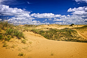 Sand Photos - Desert landscape in Manitoba by Elena Elisseeva