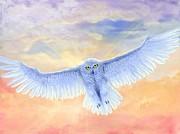 Kent Nicklin - Divine Owl