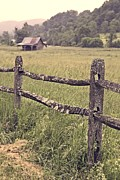 Fence Photos - Down on the Farm by Edward Fielding