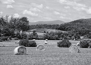 Virginia Farm Prints - Down on the Farm Print by Kim Hojnacki