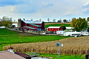 Cornfield Photos - Down on the Farm by Robert Harmon