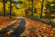 Autumn In New England Prints - Down The Autumn Road Print by Bill  Wakeley