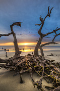 Sunset Scenes. Posters - Driftwood Poster by Debra and Dave Vanderlaan