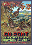 Quail Art - Du Pont Smokeless by Gary Grayson