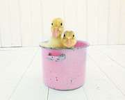 Baby Animals Prints - Duck Soup  Print by Amy Tyler