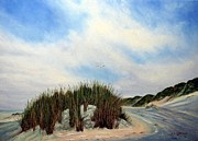 Andries Hartholt - Dune in winter
