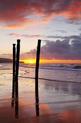 Region Posters - Dunedin St Clair Beach at Sunrise Poster by Colin and Linda McKie