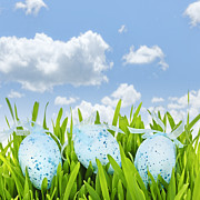 Easter Eggs Posters - Easter eggs in green grass Poster by Elena Elisseeva