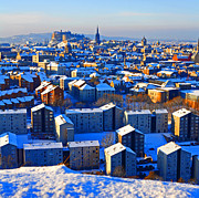 Winter Photos Prints - Edinburgh Winter Print by Craig Brown