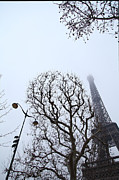 Lamps Photo Acrylic Prints - Eiffel Tower - Paris France - 011317 Acrylic Print by DC Photographer
