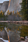 High Sierra Metal Prints - El Capitan Reflections Metal Print by Stephen  Vecchiotti